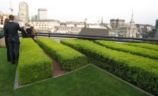 Landscaping Solutions Formal Gardens Kwikfynd