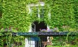 Landscaping Solutions Green Walls